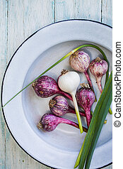 Young Garlic in a bowl