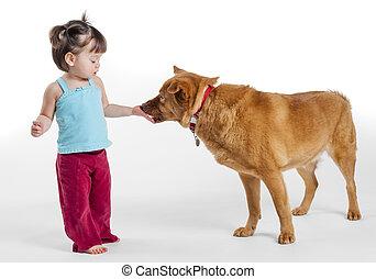 Young girl feeding treat to dog