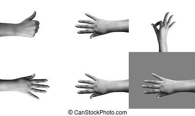 """Young girl hands showing joyful symbols"" - ""Cheery 3d ..."
