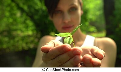 girl holds out handful of soil with little green plant -...