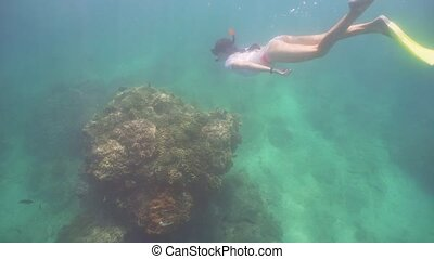 Girl snorkelling underwater. - Young girl in a mask and a...