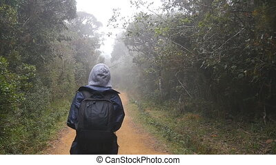 Young girl in raincoat going on wood trail during travel. Hiking woman with backpack walking in tropical wet forest. Follow to female tourist stepping on the jungle path. Slow motion Rear back view