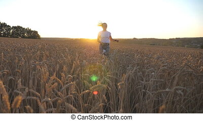 Young girl in sunglasses running with her dog through ripe spikelets at meadow. Cute siberian husky pulling the leash during jogging on wheat field at sunset. Sunlight at background. Slow motion