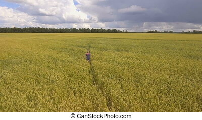 Young girl in the wheat field.Aerial video. - Pretty young...