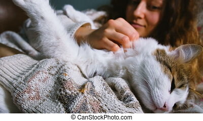 Young girl stroking fluffy cat lying on the bed