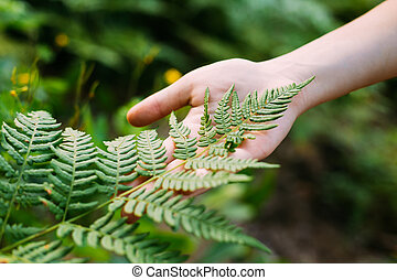 Young Girl Touching Holding Fern Leaf In Summer Park Forest.
