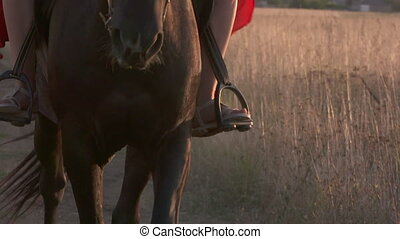 Close-up of female rider in saddle and horse's hooves legs...