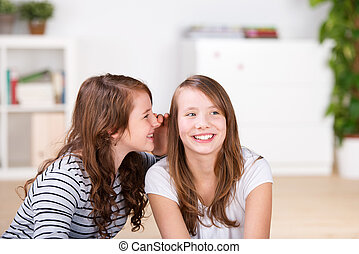 Young girl whispering secrets to her best friend