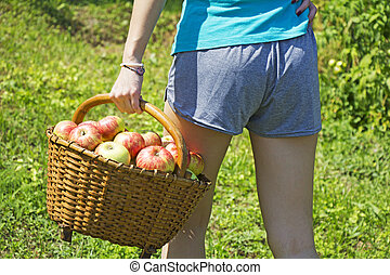 Young girl with a basket of apples in the garden