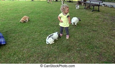 Young girl with curly hairs have fun between rabbits bunnies...