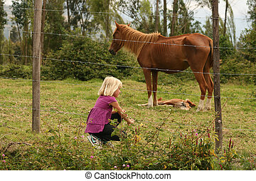 Young Girl with horse and colt