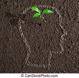 young growth of idea inside of human head contour on soil...