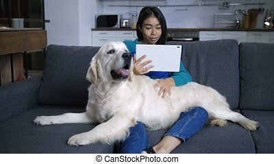 Young hindu woman watching tablet and stroking dog -...