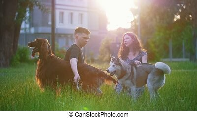 Young loving couple with their dogs having a rest outdoors on the grass at sunset