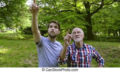 Young man and his senior father on a walk in park.