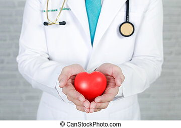 Young man doctor holding a red heart, standing on wall background.
