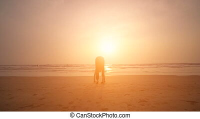 Young man doing yoga on a beach at sunset