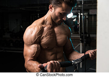 Young Man Exercising Biceps In The Gym