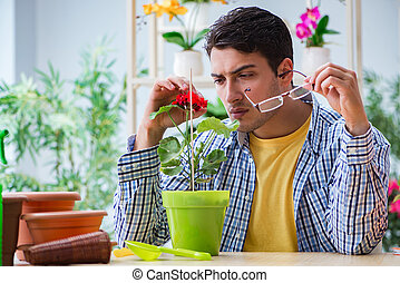 Young man florist working in a flower shop