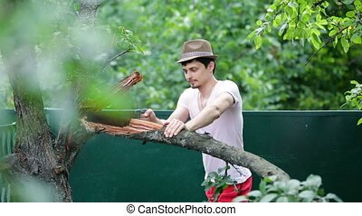 young man in hat saws branch on tree in the summer. Sawing wood