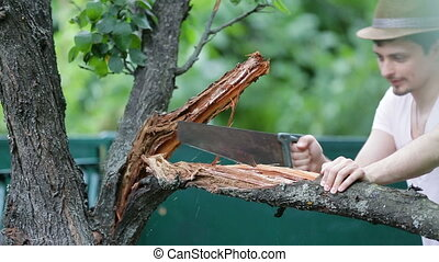 young man in hat saws branch on tree in the summer. Sawing...