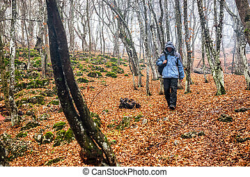 Young man in the autumn forest