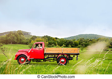 Young man inside red vintage pickup truck, green nature -...