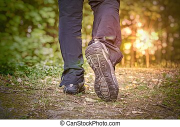 Young man is walking at sunset in forest.