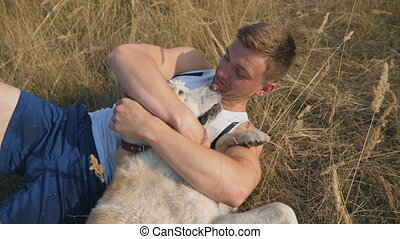 Young man lies on meadow and plays with his labrador. Guy...