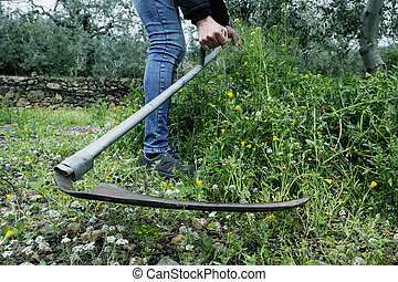young man mowing the grown grass with a scythe