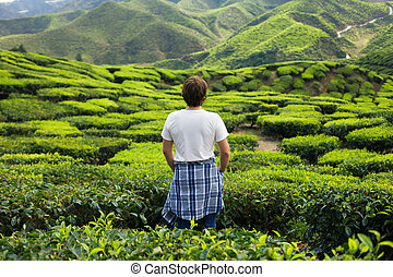 Young Man on Tea Plantation
