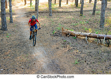 Young Man Riding the Mountain Bike in the Pine Forest. Adventure and Travel Concept.