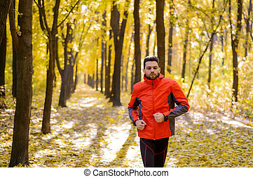 Young Man Running on Sunny Trail in the Beautiful Autumn Oak Forest