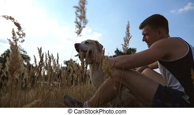 Young man sitting on green grass at meadow and stroking his...