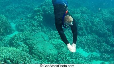 Young man snorkeling. - Young man snorkeling in transparent...