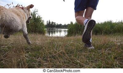 Young man throws stick to his dog into the lake. Labrador or...