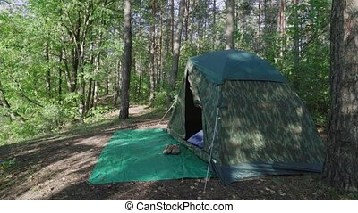 Young man wakes up comes out of tourist camouflage tent at dawn in the forest at morning. Tourist fisherman with long hair exits marquee between big trees. Guy enjoys nature on vacation.