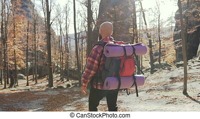 Young man walking in the woods with a backpack on his shoulders. The man travels around Europe in the autumn season