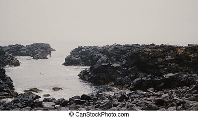 Young man walking through the rocks on the shore of the sea. Male in lopapeysa exploring the black beach alone.