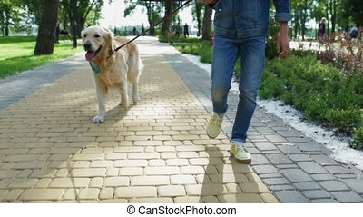 Young man walking with his purebred dog
