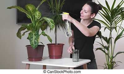 YOung millennial woman taking care of home plants. Freelancer florist. Eco friendly occupation. Garden room