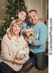 Young Mixed Race Family In Front of Christmas Tree
