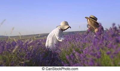 Young mother gives her daughter a bouquet of lavender gathered in a fragrant field in slow motion