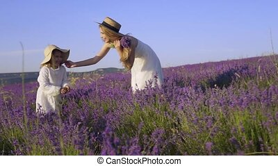 Young mother holds her daughter by the hand and walks through the lavender field with a bouquet of lavender in slow motion