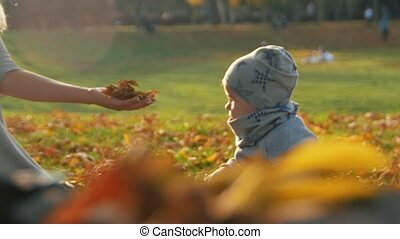 Young mother sitting on the grass and playing with her little son in the park. Playing with autumn leaves. Sunlight.