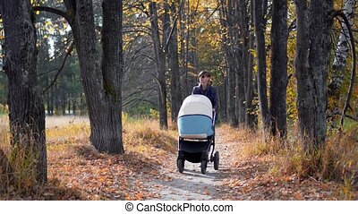 Young mother with pram walking in the autumn park.