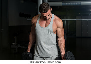 Young Muscular Man Lifting Weights - Young Athlete In Gym...
