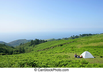 young people camping in the nature