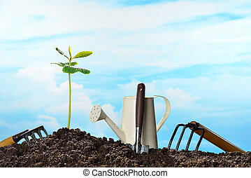 Young plant and garden equipment on sky background