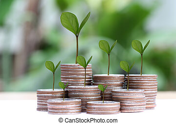 young plant grown to stack silver coin in business growth...